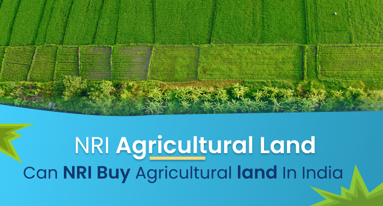NRI Agricultural Land: Can NRI buy Agricultural Land in India?