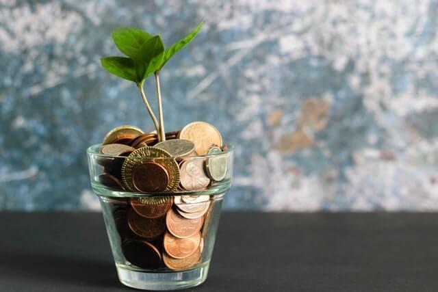 NRI Financial Plan savings